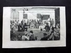 The Graphic 1880 Antique Print. Cock-Fighting at Port Louis, Mauritius